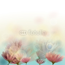 Naklejki Water lily / Floral background