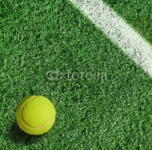 Obrazy i plakaty yellow tennis ball on green grass