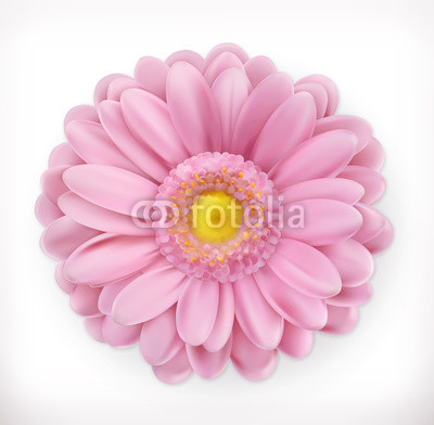 Spring pink flower, 3d vector icon
