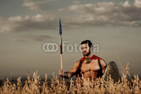 Athletic warrior like spartan among grass in field.