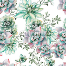 Fototapety Water color pattern with succulents . Illustration