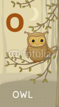 Naklejki Letter O, Owl, animal ABC