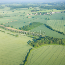Fototapety view over the early summer green fields