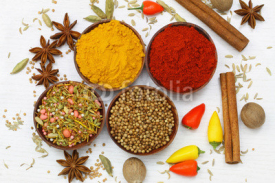 Fototapety Selection of Indian spices, close up