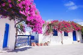 Naklejki Traditional greek house with flowers in Paros island, Greece. Blue door and blue window surrounded by magenta flowers.