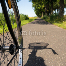 Fototapety cycling in summer