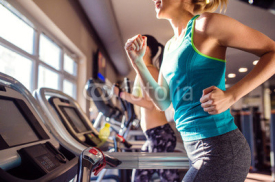 Obrazy i plakaty Two fit women running on treadmills in modern gym