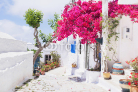 Naklejki Traditional greek street with flowers in Amorgos island, Greece