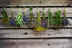 Naklejki Herbs drying on the wooden barn in the garden