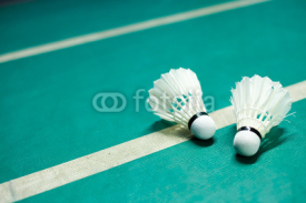 Obrazy i plakaty Shuttlecock on badminton playing court