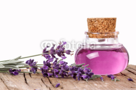 Fototapety Lavender, wellness, isolated