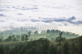 Fototapety Autumn above the clouds