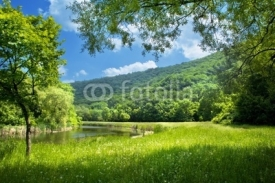 Naklejki summer landscape with river and blue sky