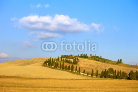 Naklejki Tuscany, Crete Senesi farmland, cypress tree and fields. Italy.