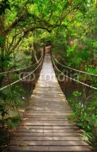 Naklejki Bridge to the jungle,Khao Yai national park,Thailand