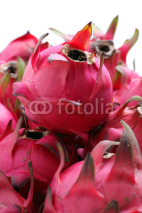 Fototapety Red Dragon Fruits
