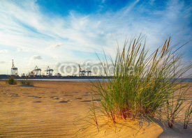 Obrazy i plakaty Baltic sea grassy dunes and indusrtial port Gdansk, Poland