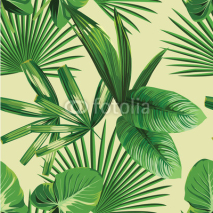 Fototapety tropical  palm leaves seamless background