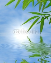 Fototapety Bamboo and sky reflected in the water; Zen atmosphere.
