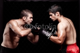 Fototapety Mixed martial artists before a fight