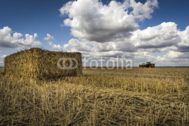 Obrazy i plakaty Straw bale, tractor on the horizon, fluffy cloud blue skies
