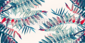 Beautiful tropical leaves background, banner
