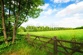 Fototapety Fence in the green field under blue sky