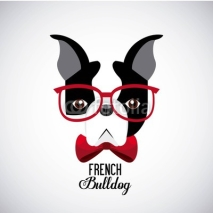 Obrazy i plakaty french bulldog design