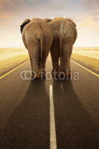 Fototapety Conceptual - Going away together / travel by road