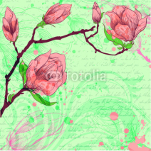 Fototapety Spring background with magnolia flowers
