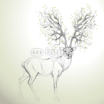 Obrazy i plakaty Deer with Antler like tree / Realistic sketch