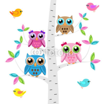 Obrazy i plakaty Vector set of a colorful owls and birds  at the tree