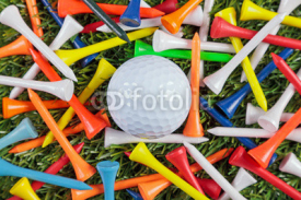 Fototapety Golf ball and wooden tees collection.