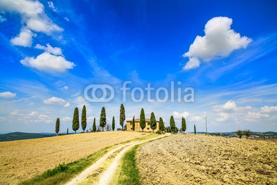 Tuscany farmland, trees and road. Siena, Val d Orcia, Italy.