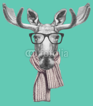 Fototapety Portrait of Moose with glasses and scarf. Hand drawn illustration.