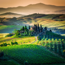 Fototapety Tuscan country