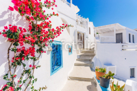 Fototapety Traditional cycladic whitewashed street with blooming bougainvillea in the summer, Santorini, Greece