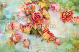 Fototapety Dry roses beautiful vintage background