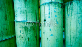 beautiful natural wooden bamboo texture
