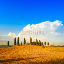 Naklejki Tuscany, farmland, cypress trees and white road. Siena, Val d Or