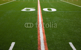 Naklejki American Football Field - 50 yard line