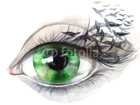 Naklejki eye with birds (series C)
