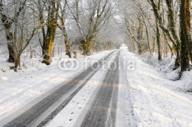 Naklejki Vehicle tracks on snow covered country lane