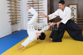 Fototapety Action Aikido.