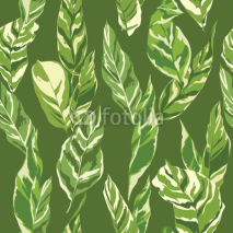 Fototapety Tropical Leaves Background - Vintage Seamless Pattern