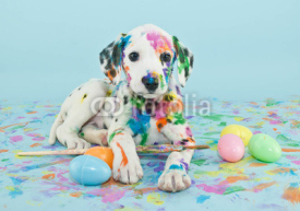 Fototapety Easter Dalmatain Puppy