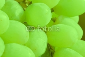 Fototapety Green grapes
