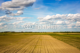 Fototapety Agricultural landscape