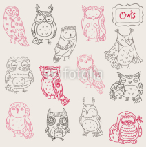 Obrazy i plakaty Various Owl Doodle Collection - hand drawn - in vector