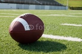 Fototapety Closeup of American Football on Field